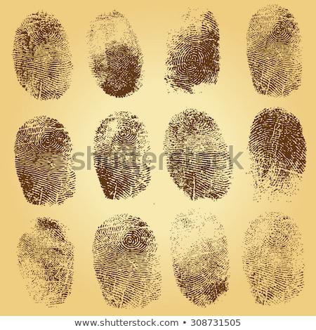 ingesteld · vingerafdrukken · identificatie · ontwerp · silhouet · stempel - stockfoto © robuart