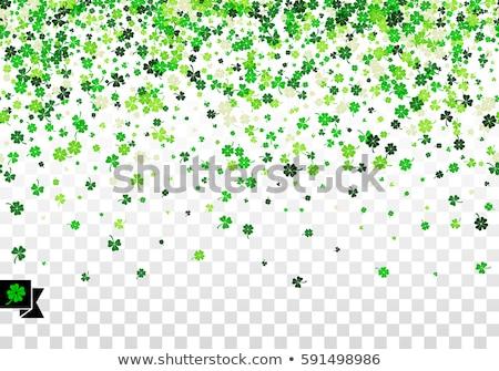 иллюстрация клевера четыре листьев символ Сток-фото © Natali_Brill
