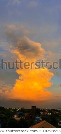 Branco belo madrugada luz laranja Foto stock © taviphoto
