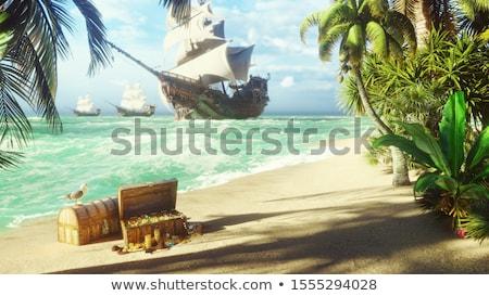 Kalóz sziget illusztráció áll fa tenger Stock fotó © colematt