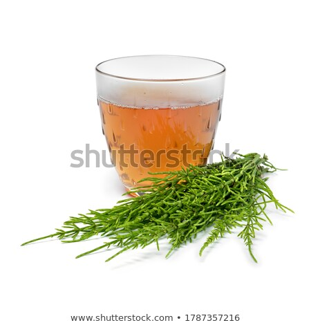 Horsetail twigs with herbal tea in the background Stock photo © madeleine_steinbach