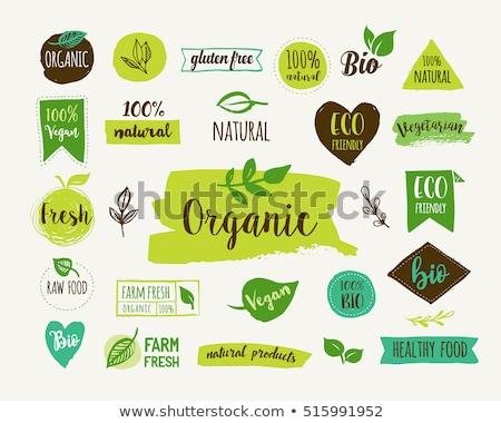 Bio, Ecology, Organic logos and icons, labels, tags. Hand drawn bio healthy food badges, set of raw, Stock photo © marish