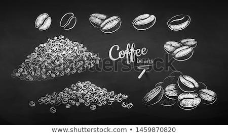 Vetor giz conjunto grãos de café quadro-negro comida Foto stock © Sonya_illustrations