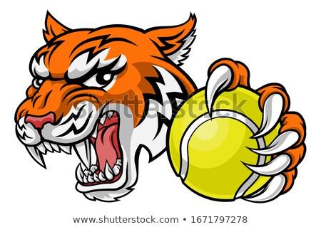 Tigre animaux sport mascotte Photo stock © Krisdog