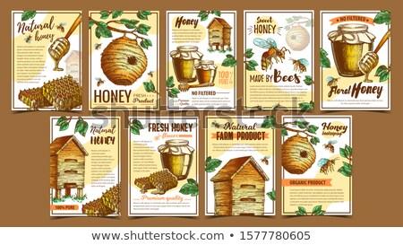 A nido d'ape legno stick poster vettore fresche Foto d'archivio © pikepicture