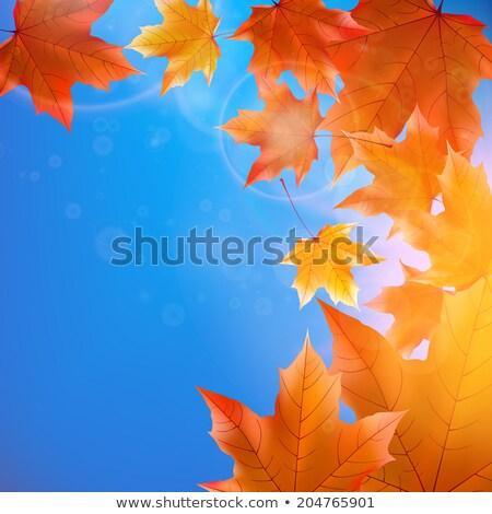 kırmızı · akçaağaç · ağaç · yaprakları · mavi · gökyüzü · eps - stok fotoğraf © alkestida