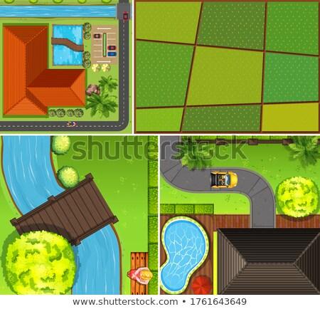 Ingesteld antenne boerderij moeras scène illustratie Stockfoto © bluering