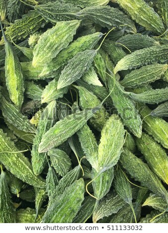 Stock photo: momordica charantia bitter melon