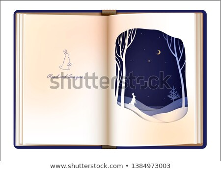 text, star and snow on open white book Stock photo © Sarunyu_foto