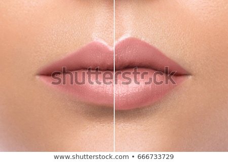 Beautiful female lips stock photo © olira