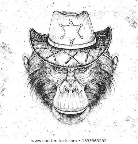monkey sheriff stock photo © brux