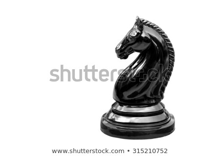 White and black knights on chess board Stock photo © ozaiachin