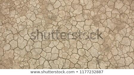 secas · solo · rachado · terra · fundo · deserto - foto stock © meinzahn