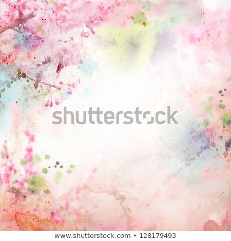 grunge · kwiat · Motyl · farby · projektu - zdjęcia stock © wad
