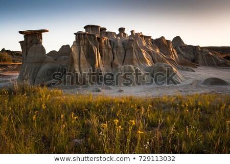Vistas of Badlands National Park, USA Stock photo © wolterk