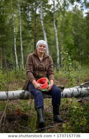cranberry in forest Stock photo © taden