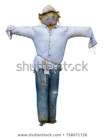 Armed scarecrow Stock photo © Tawng