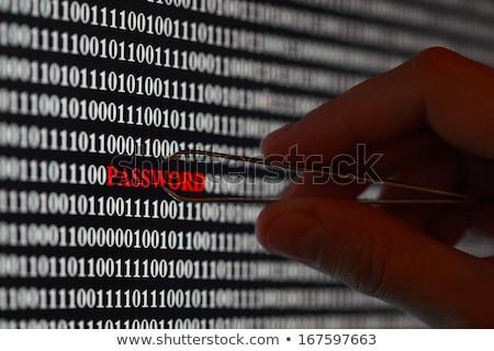 Wachtwoord ingenieur computer technologie veiligheid informatie Stockfoto © stevanovicigor