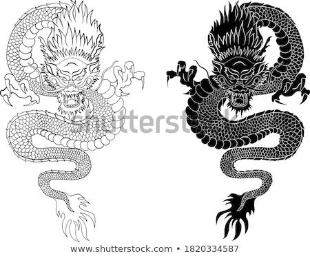 dragões · anel · fogo · dragão · ilustração · branco - foto stock © derocz