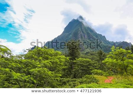 Intérieur île français polynésie eau amour Photo stock © danielbarquero