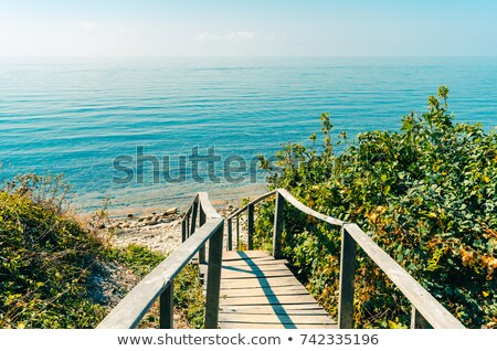 Holz Treppe führend Strand nach unten Stock foto © Frankljr