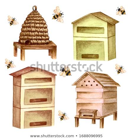 wooden beehives in the garden  Stock photo © Virgin