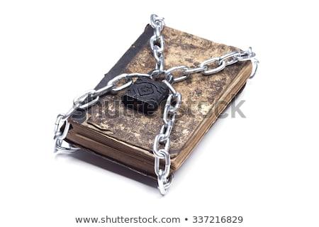 Książki łańcucha kłódki odizolowany biały edukacji Zdjęcia stock © natika