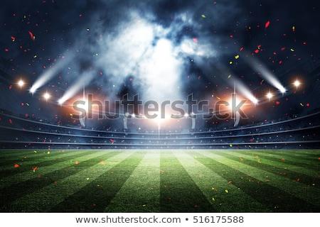vektor · futballabda · stadion · üzlet · fű · földgömb - stock fotó © -baks-