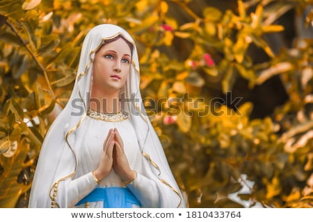 Shrine of Our Lady of Mercy  Stock photo © compuinfoto