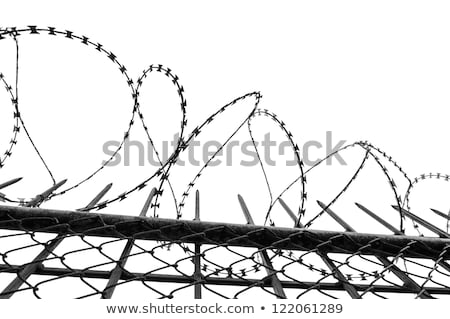 金属 · 線 · スタジオ · 写真 · ロール - ストックフォト © traza