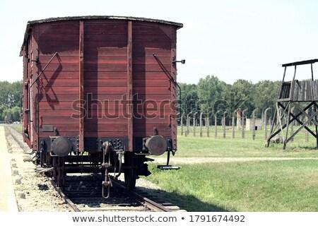Railroad in Auschwitz Stock photo © vapi