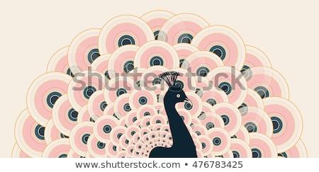 Pauw Open trein textuur oog vogel Stockfoto © vapi