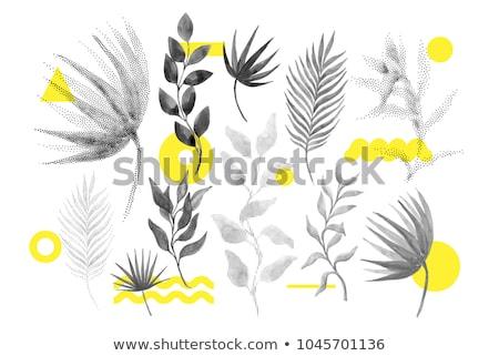 Primavera elementos padrão estilo amor flor Foto stock © netkov1