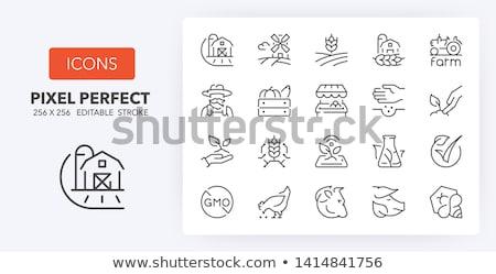 planta · animal · produtos · ilustração · peixe - foto stock © bluering