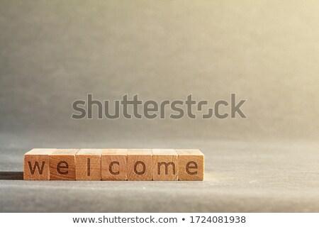 palavra · orçamento · alfabeto · borracha - foto stock © fuzzbones0