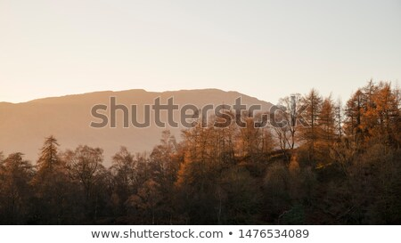 Mistig berg landschap zonsondergang rotsen voorgrond Stockfoto © Kayco