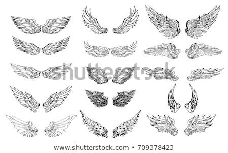 Conjunto asas tatuagem pintado preto e branco pássaro Foto stock © blackmoon979