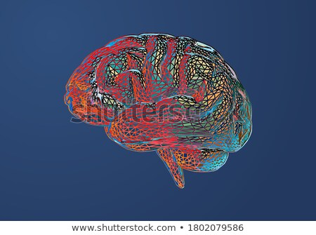 Stock photo: Digital vector red medicine brain structure