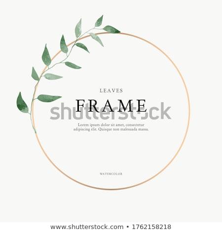 Romantica frame ghirlanda cuori diverso parecchi Foto d'archivio © Irinka_Spirid