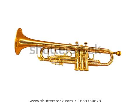 tuba music and reflection Stock photo © njaj