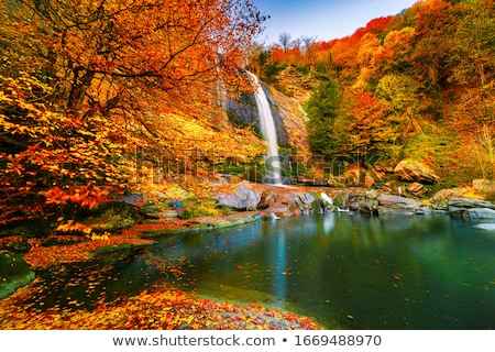 autumn landscape with a mountain river and waterfalls stock photo © kotenko