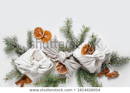 friends with gifts stock photo © deandrobot