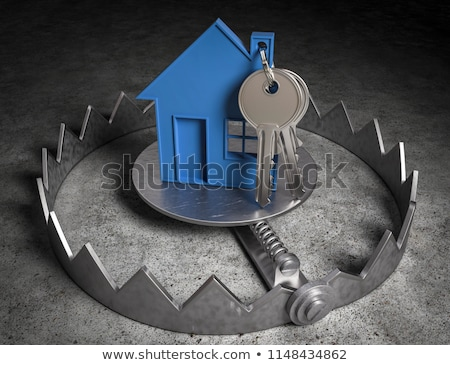 Real estate Trap Stock photo © Lightsource