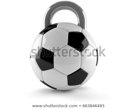 Futbol topu yalıtılmış futbol beyaz spor eğlence Stok fotoğraf © MaryValery