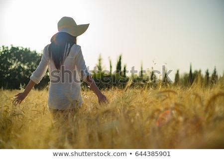 Rear view of young woman standing in wheatfield Stock photo © monkey_business