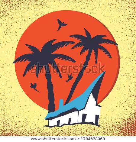 parrot on cabin sea on the beach Stock photo © adrenalina