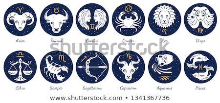 asztrológia · felirat · állatöv · halfajok · ábécé · hieroglifa - stock fotó © krisdog