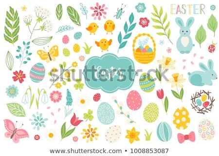Пасху набор крашеные яйца Cute Bunny другой Сток-фото © OliaNikolina