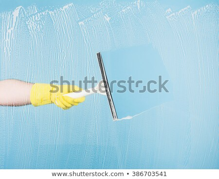 el · eldiven · mavi · sünger · temizlik · cam - stok fotoğraf © oleksandro