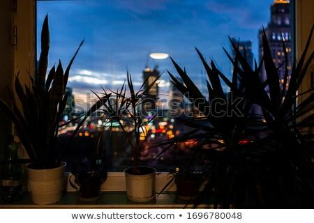 Lichten frame Warschau oude lantaarns Stockfoto © backyardproductions